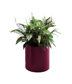 "Planter, 15""ID x 14""H, rimless, fiberglass, indoor/outdoor, black"