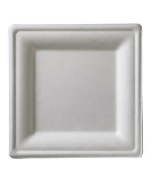 """Disposable Plate, 7-7/8"""" x 7-7/8"""" (20 x 20 cm), square, biodegradable/compostabl"""