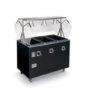 """Affordable Portable™ Hot Food Station Deluxe, (3) well, 46""""W x 39-1/2""""D x 59""""H O"""